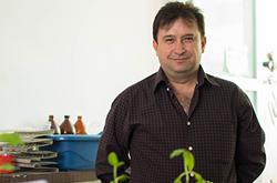 Investigadores BUAP contribuyen a degradar compuestos tóxicos que contaminan el medio ambiente