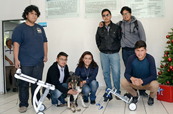 Estudiantes de la FCE fabrican sillas de ruedas para perros