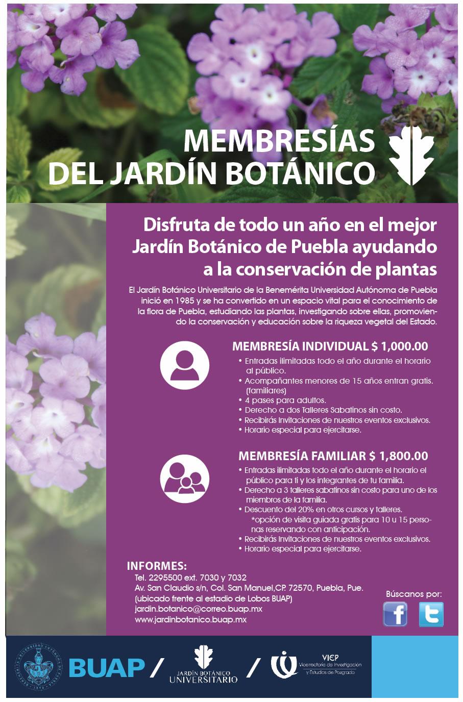 Taller de elaboraci n de composta y lombricomposta for Jardin botanico numero telefonico